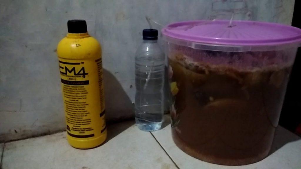 Proses fermentasi MOL