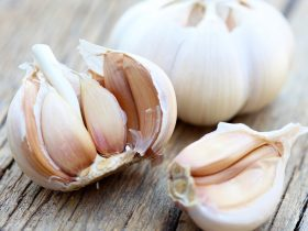 pestisida alami bawang putih