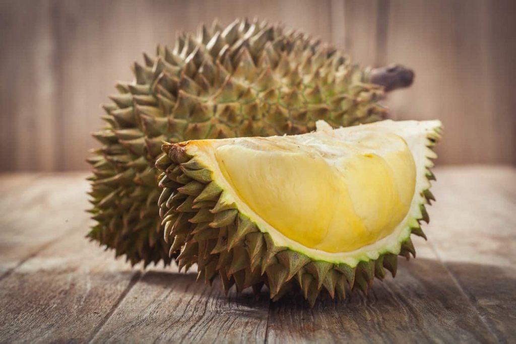 Cara Budidaya Tanaman Durian Berbuah Lebat