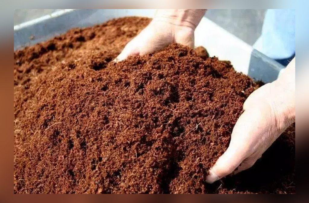 Cara Sederhana Membuat Cocopeat