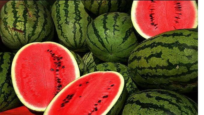 Varietas semangka lokal