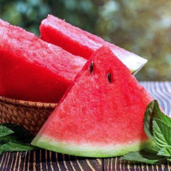 varietas semangka merah